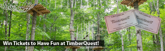 Now It's Your Turn to Have Fun at TimberQuest!