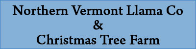 Northern Vermont Llama Co & Christmas Tree Farm | Waterville, VT