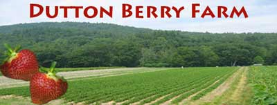 Dutton Berry Farm and Farm Stands | Newfane, Manchester, & West Brattleboro, VT